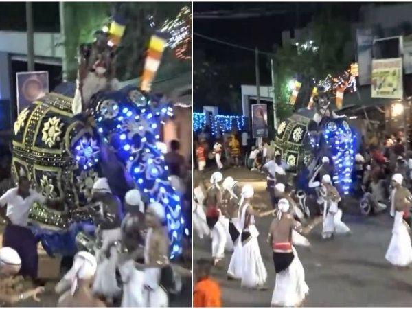 இலங்கை திருவிழாவில் யானை தாக்கியதால் 18 பேருக்கு காயம், 18 people injured as elephant attacks in srilanka buddhist paegant